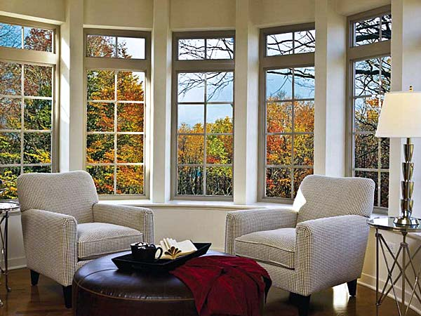 Examples of window replacement